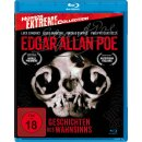 Edgar Allan Poe - Geschichten des Wahnsinns