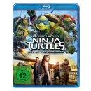 Teenage Mutant Ninja Turtles - Out of the Shadow